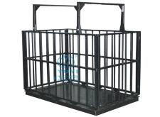 带围栏动物地磅,1吨电子磅,电子秤